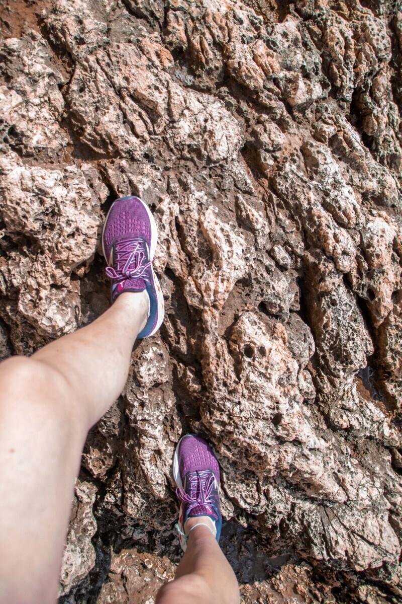 Zelfs op rotsen en ruig terrein zeer prettig in gebruik