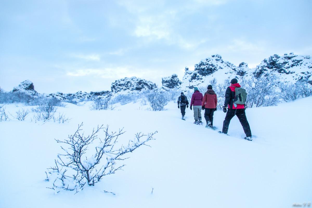 Myvatn Winter wonderland-8