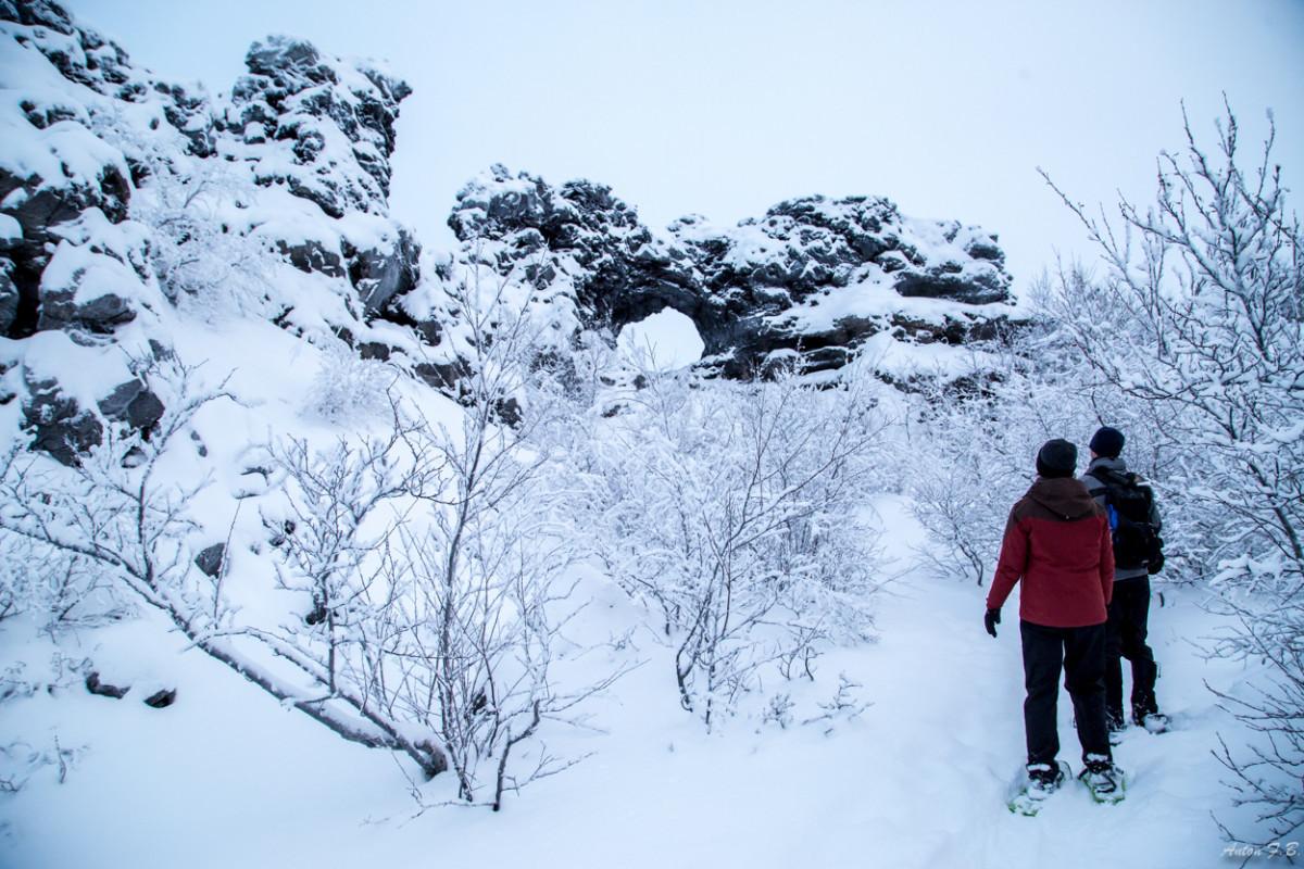 Myvatn Winter wonderland-24