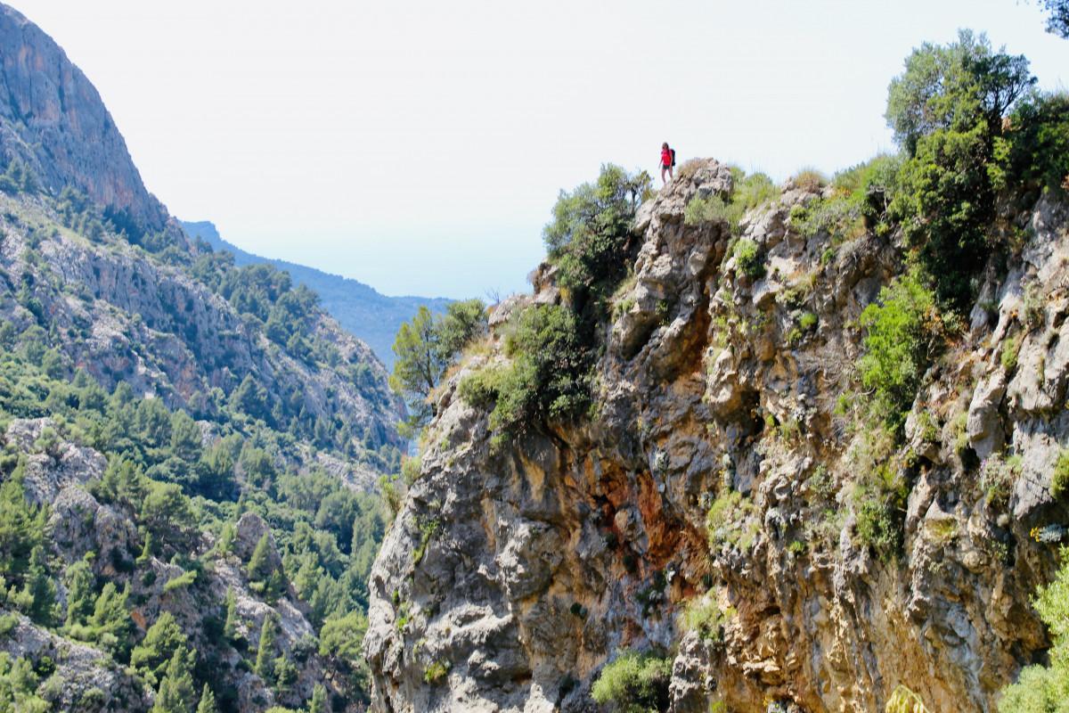Klein stipje op hoge rots. Foto: Pauline van der Waal