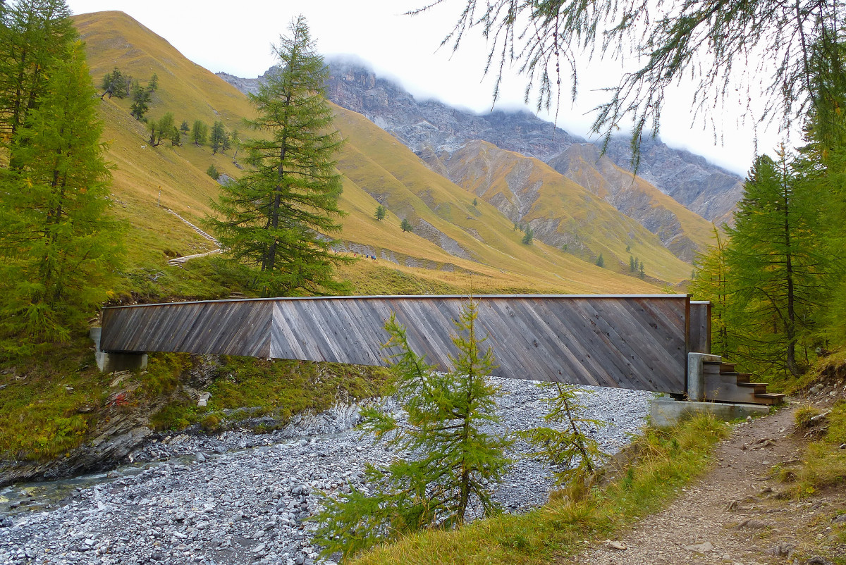 Zwitsers Nationaal Park Val Trupchun
