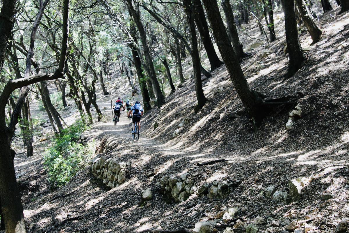 Onderweg kom je veel mountainbikers tegen. Foto: Pauline van der Waal