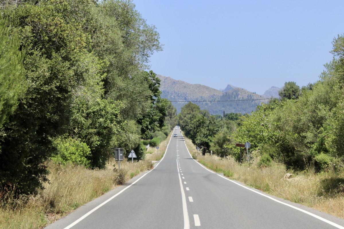 Het laatste stuk loopt parallel aan de weg. Foto: Pauline van der Waal