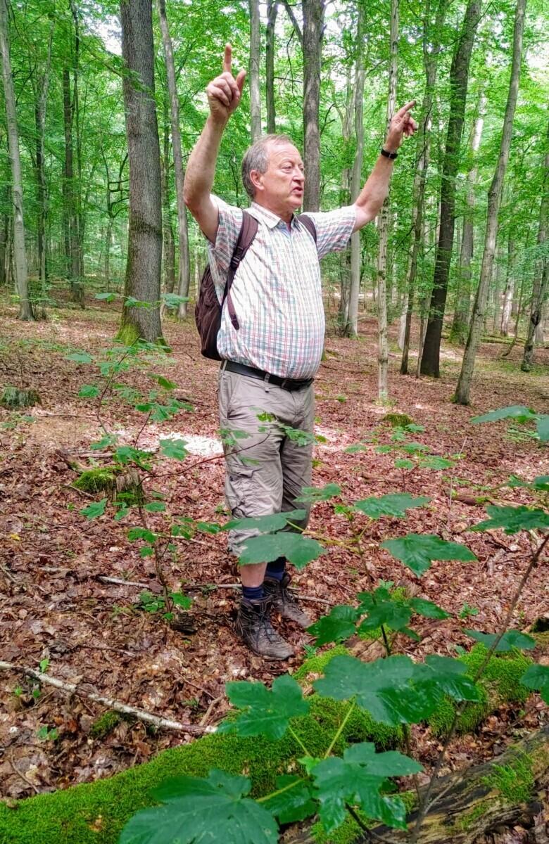Saarland: Gids Winfried vertelt vol enthousiasme over zijn project (armen in de lucht, omringd door oerbos)