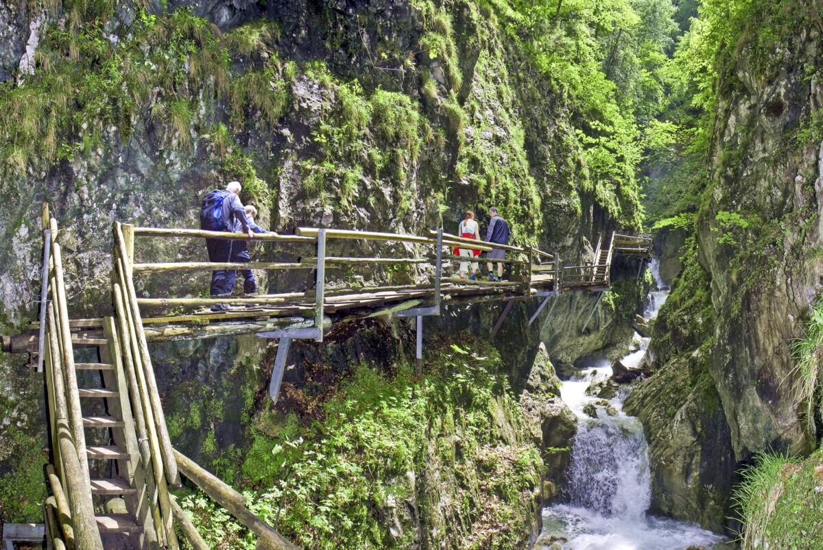 Foto: Pyhrn Priel Tourismus GmbH-Sulzbacher