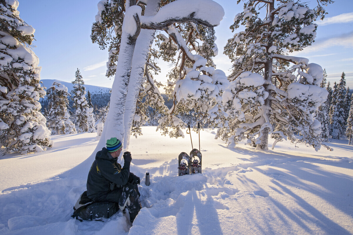 Geniet in alle rust van het spierwitte landschap. Foto: Destination Lapland