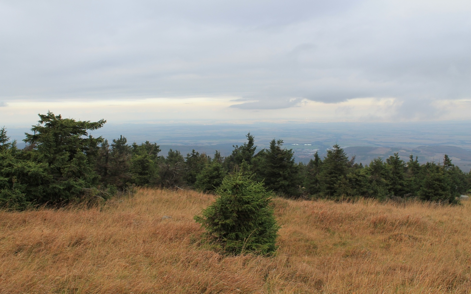 Het uitzicht op de top van de Brocken